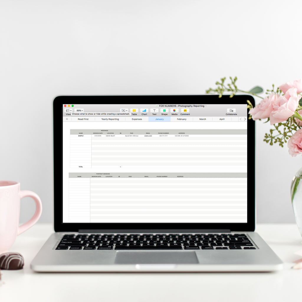 Photography Business Record Keeping Spreadsheets