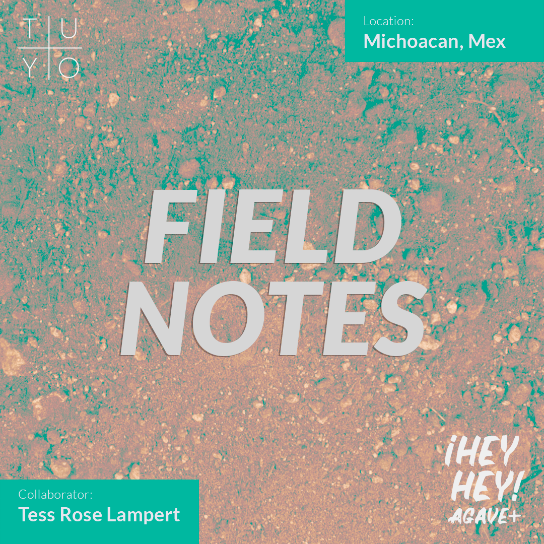 ¡Hey Hey! Agave / 14 + Field Notes Michoacán
