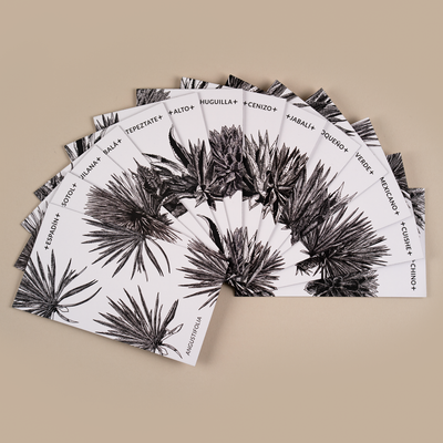 Agave Species card deck