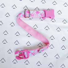 Lilly Pulitzer Jellies Be Jammin' Dog Collar