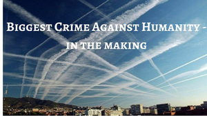 Oracle Explains the Damage done by Chemtrails