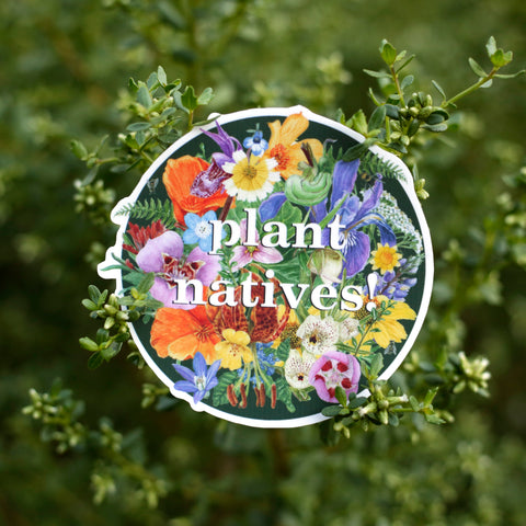 "A circular sticker with California native plants that says ""plant natives!"" in the center, surrounded by green coyote brush."