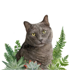 CA Native Plants + Pet Portrait Commission