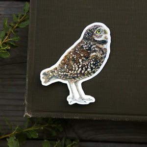 Burrowing Owl Single Sticker