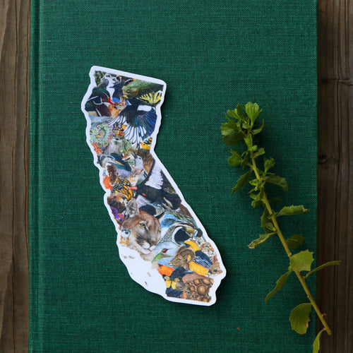 California Wildlife Vinyl Sticker