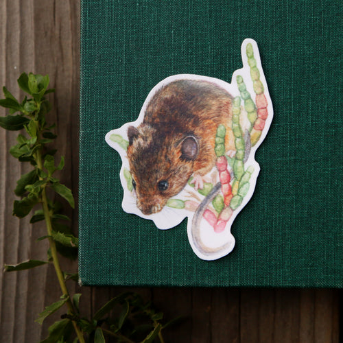 Salt Marsh Harvest Mouse Single Sticker