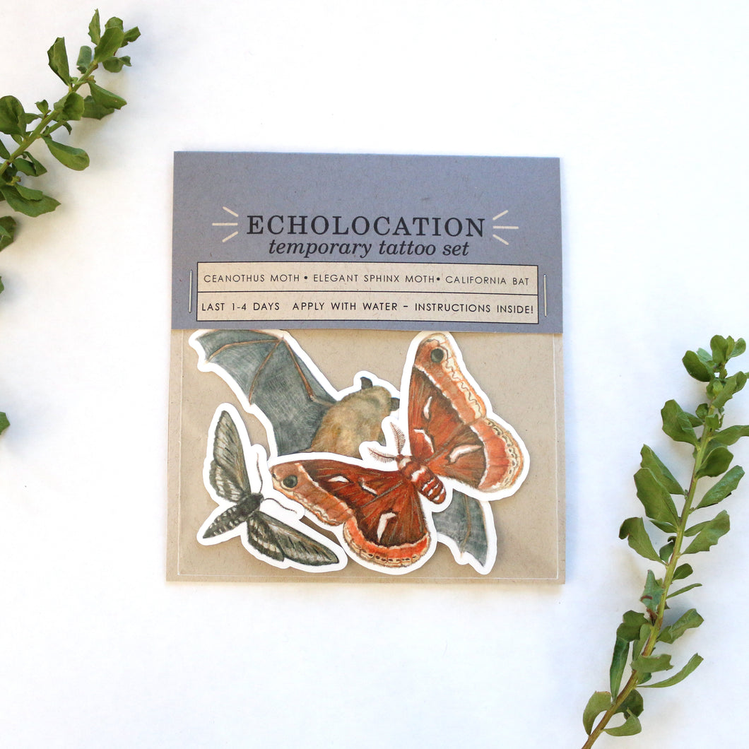 Echolocation Temporary Tattoos: California Bat, Silk Moth, Elegant Sphinx Moth