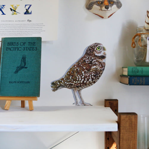 Burrowing Owl Wall Decal
