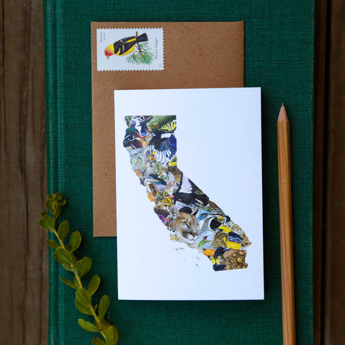 California Wildlife Card - greeting card, animal card