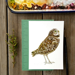 Burrowing Owl 5x7- Native California Wildlife, Bird Print, Birding gift
