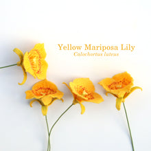 Yellow Mariposa Lily - Calochortus luteus - fiber sculpture, fabric flower