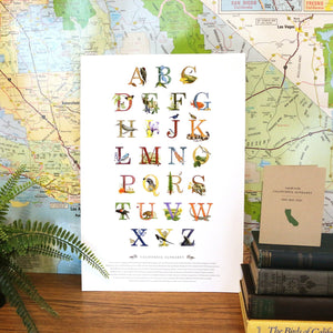 California Alphabet Poster
