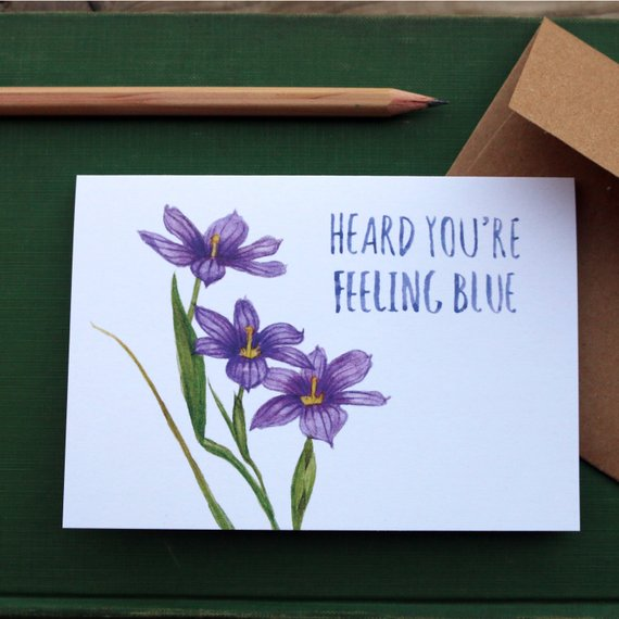 Native California blue eyed grass watercolor greeting get well card