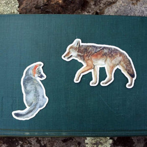 Dogs of California Sticker Set: Two Vinyl Stickers- Channel Island Fox, Coyote, Canines
