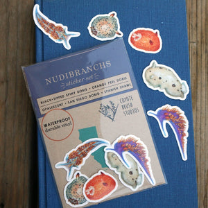 Nudibranch Stickers: Five Vinyl Stickers, Opalescent Nudibranch, Spanish Shawl, Spiny Doris, San Diego Dorid