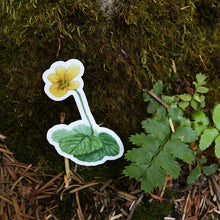 Redwood Understory Stickers: Four Vinyl Stickers, Fairy Slipper Orchid, Pacific Trillium, Redwood Violet, Fetid Adder's Tongue