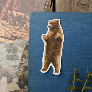 State Symbols Stickers: Three Vinyl Stickers, Coastal Redwood, California Grizzly, Gray Whale