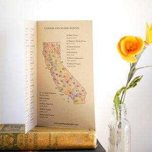 *B-Grade Seconds* California Wildflower Poster: 45 Native California Wildflowers