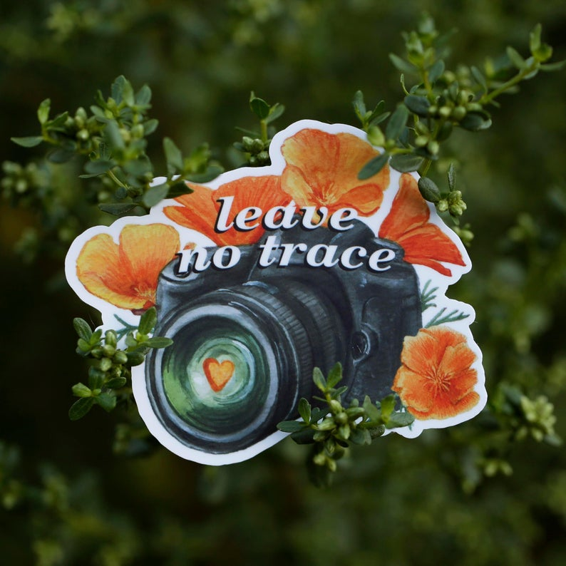 Leave No Trace - California Poppies and Camera Vinyl Sticker