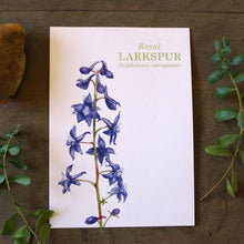 Royal Larkspur watercolor painting art print native California 5x7