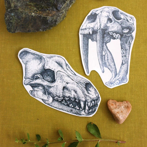 Extinct California: Smilodon & Dire Wolf Skull Temporary Tattoos