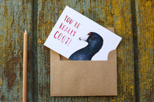 You're Really COOT! - American Coot Love Card
