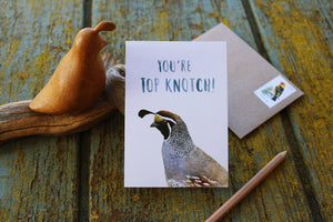 You're Top Knotch! California Quail Card