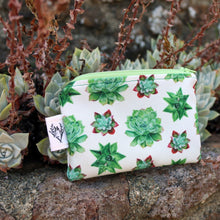 Succulent Coin Purse, Small Organizer, Native Dudleya