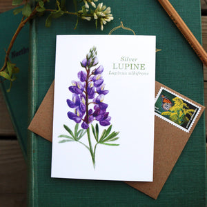 Native California silver lupine wildflower watercolor note card