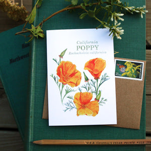 Native California poppy watercolor note card