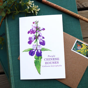 Native California wildflower purple Chinese houses watercolor note card