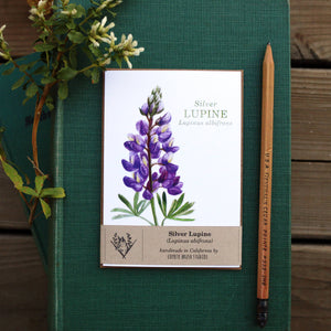 Silver Lupine Greeting Card, Wildflower Note Card