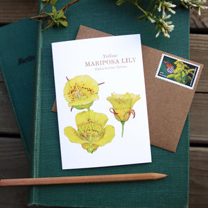 Native California wildflower yellow mariposa lily watercolor note card