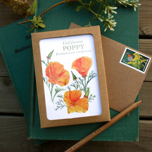 Set of 8 Wildflower Cards - Poppy, Lupine, Larkspur, Indian Paintbrush, Mariposa Lily, Pipevine, Humboldt Lily, Purple Chinese Houses