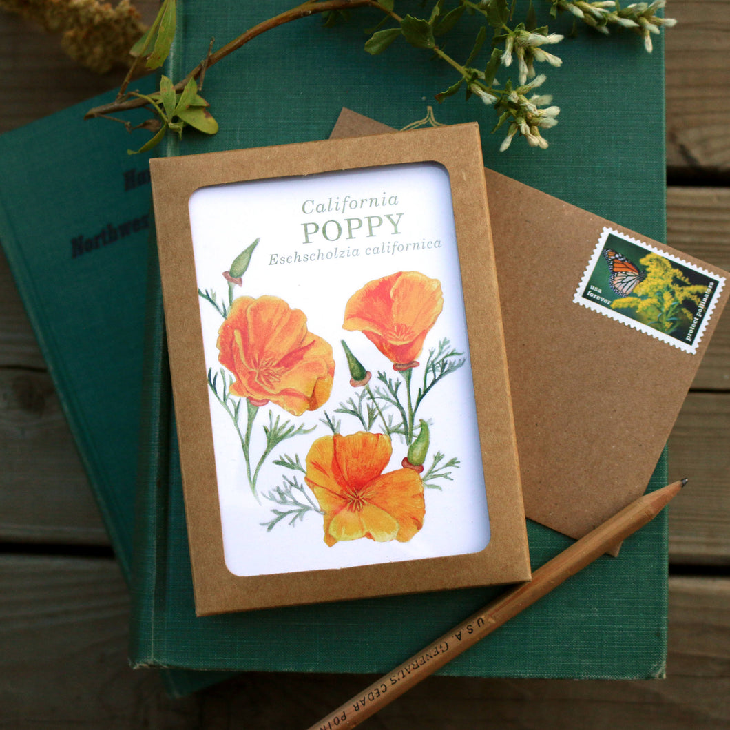 Native California wildflower watercolor note card set