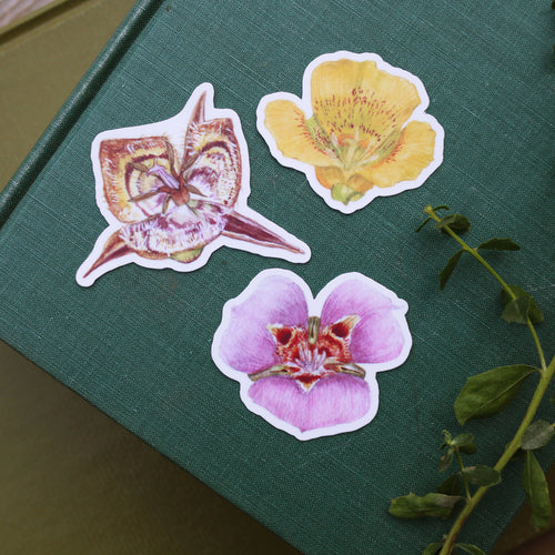 Mariposa Lily Stickers- Butterfly Mariposa Lily, Yellow Mariposa Lily, Tiburon Mariposa Lily Vinyl Stickers