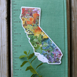 California Rainbow Diversity of Life Vinyl Sticker