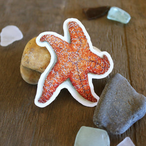 Tide Pools Stickers: Four Vinyl Stickers, Ochre Sea Star, Nudibranch, Sea Urchin and Tide Pool Sculpin