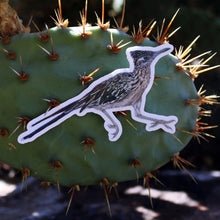 Deserts of California: Three Vinyl Stickers, Greater Roadrunner, Desert Tortoise, Beavertail Pricklypear Cactus