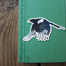 Corvid Stickers: Three Vinyl Stickers - Scrub Jay, Yellow Billed Magpie, Steller's Jay