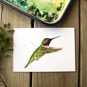 Anna's Hummingbird 5x7 Print - Native California Wildlife, Watercolor print, Bird Print, Birding Gift, Birdwatcher Gift, Hummingbird Gift