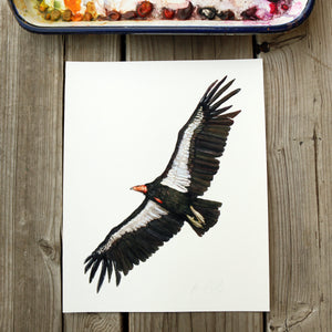 California Condor watercolor painting art print native California 8x10