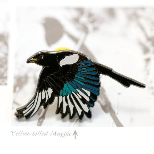 SECONDS SALE Yellow Billed Magpie Hard Enamel Pin