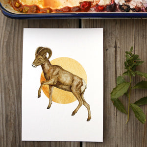 Desert Bighorn Sheep watercolor painting art print native California 5x7