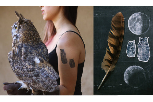 Owls Temporary Tattoos: Western Screech Owl, Great Horned Owl