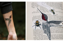 Bird & Bees Temporary Tattoos: Anna's Hummingbird and California Bees