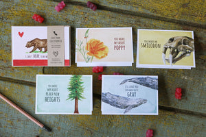 Love from California: Set of 5 Love Cards - Smilodon, Poppy, California Grizzly, Redwood, Gray Whale Love Cards
