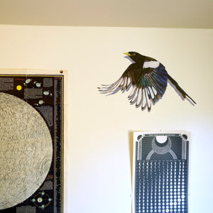 Yellow Billed Magpie Wall Decal