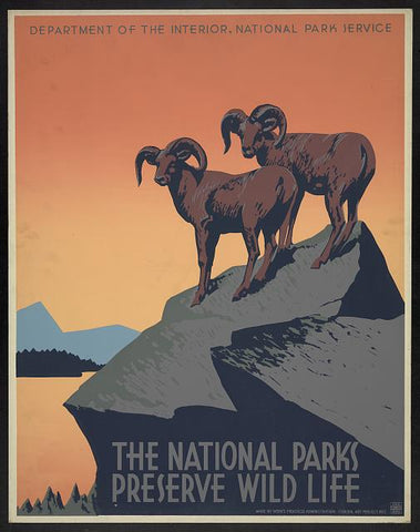 wpa original national park poster
