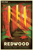 Redwood National Park Poster